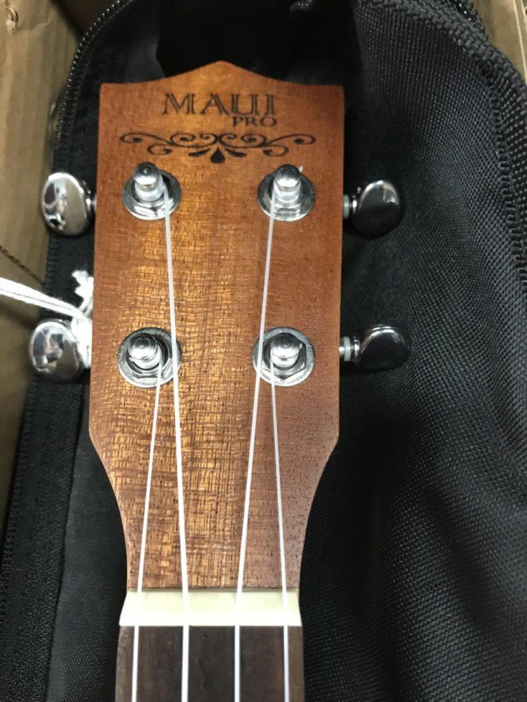 paletta ukulele Maui